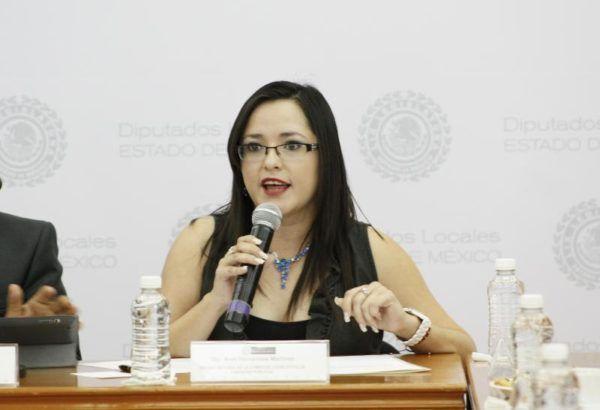 ARELY HERNANDEZ DIPUTADA
