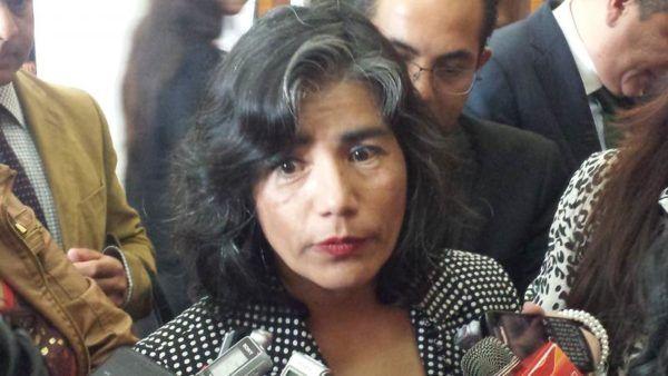 LUZ MARIA ZARZA INICIATIVAS PENDIENTES