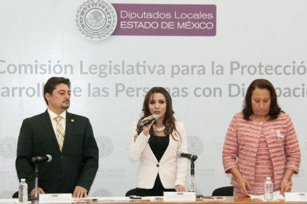 CAROLINA GUEVARA MAUPOME INSTALA COMISION