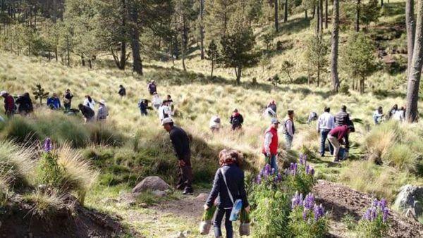 """""""Se plantaron más de mil árboles, una acción más a favor de nuestros bosques"""" MCM"""