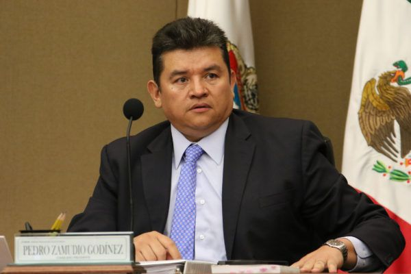 También se creó la Comisión Permanente de Seguimiento al Servicio Profesional Electoral Nacional.